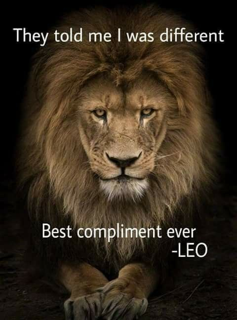 Best 25+ Leo symbol ideas on Pinterest | Leo zodiac ...