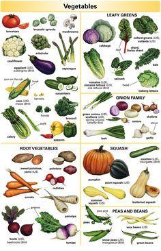vegetables vocabulary - Поиск в Google