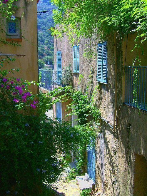 Blue shutters, Corsica,