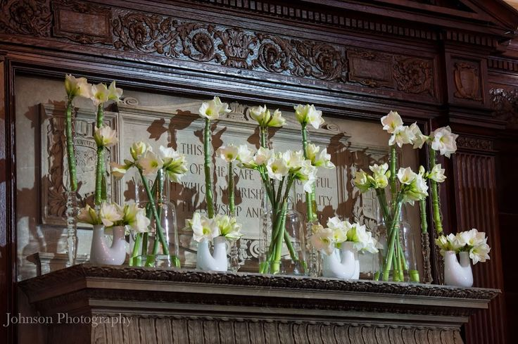 Amaryllis flowers radiating light from varying heights. Floral design: Winston Flowers. Photo credit: Johnson Photography.