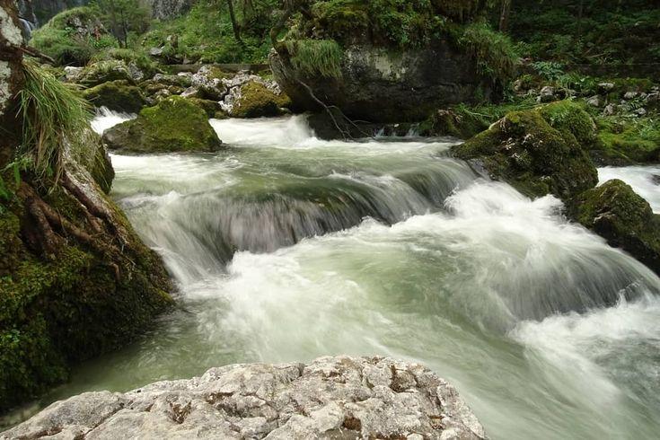 Gollinger Wasserfall  Gollinger Waterfall  #insekten #garten #foto #fotografie #stadt