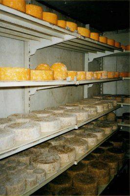 Smarts Farm Gloucester Cheese