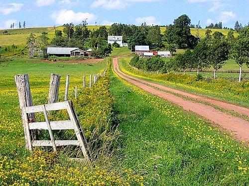 PEI red dirt roads. panoramio.com via @riti