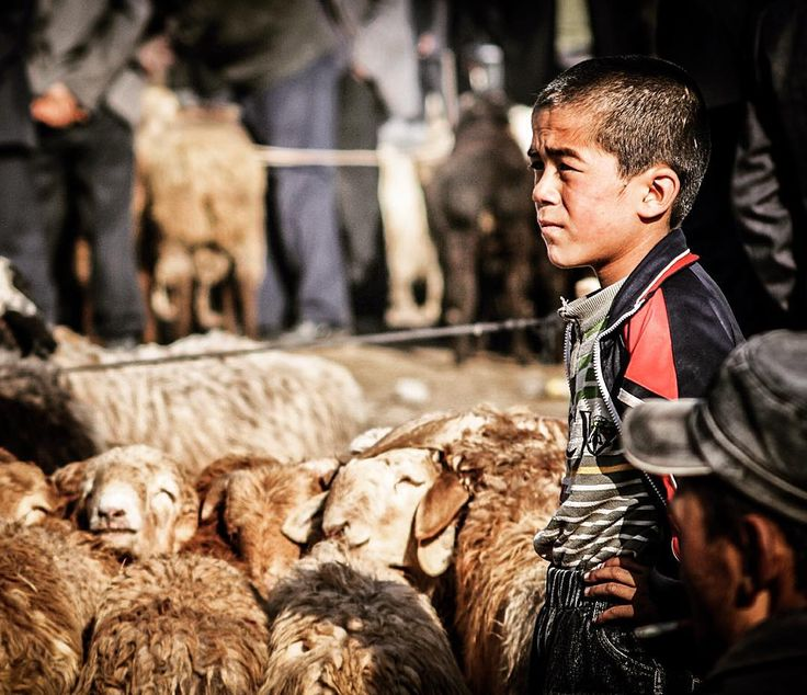 """""""A young boy waits for sale at Kashgar's animal market in Xinjiang province, far Western China.  With camels, goats, sheep, horses, cattle and much more…"""""""
