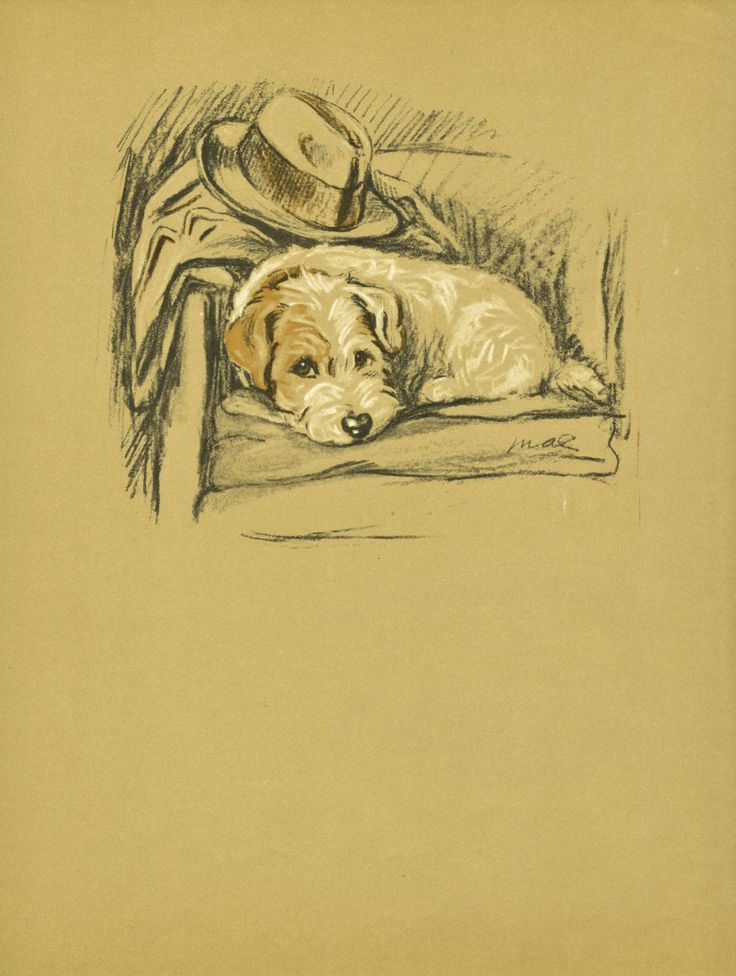 PATIENT PUP Dog Print,   Sweet, but a book died for this page