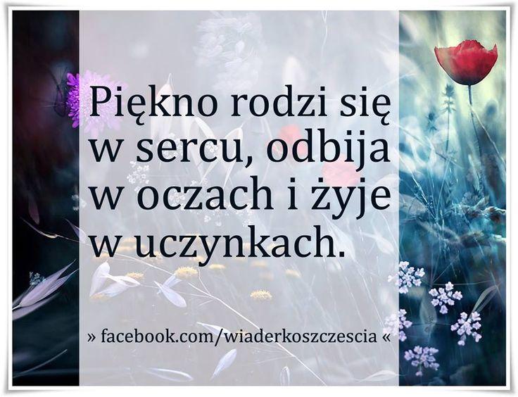 https://www.facebook.com/wiaderkoszczescia/photos/a.407970609263194.95333.407961409264114/785760088150909/?type=1