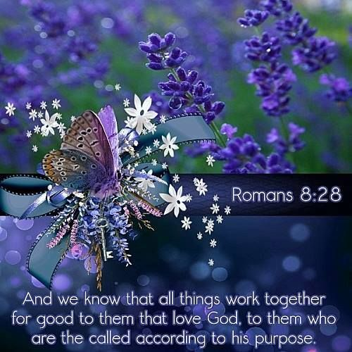And we know that all things work together for good to them that love God to them that are called according to His purpose. Romans 8:28