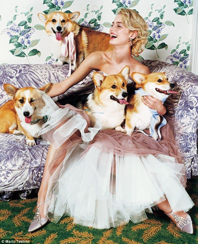 Four be-ribboned pembroke corgis (plus a model in a corset-dress by John Galliano), photographed by Mario Testino in December 2001 Vogue
