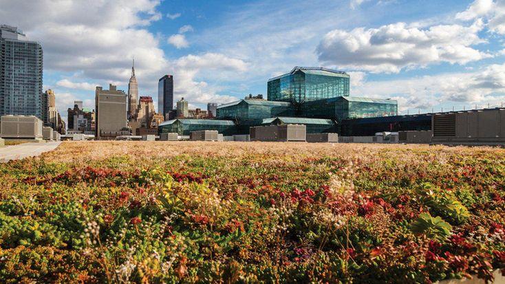Centro de Convenciones de Nueva York, EEUU. En esta instalación se implementó la idea de jardín como un aporte para hacer el edificio más eficiente en su consumo energético