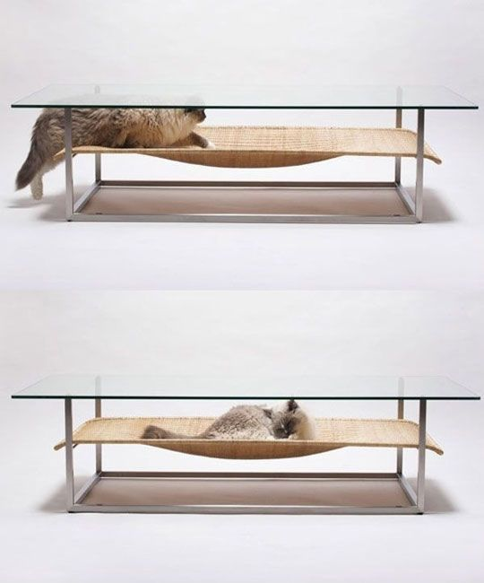 A Table For You And A Bed For Your Cat