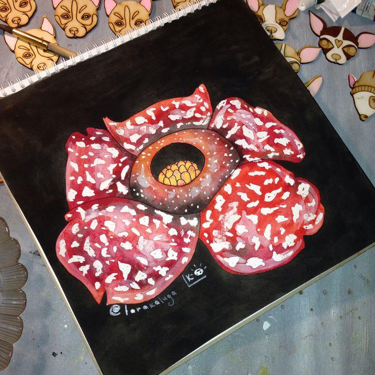 В планах на #сегодня ещё была #rafflesia from @flowerschannel  #badartist_larakaluga