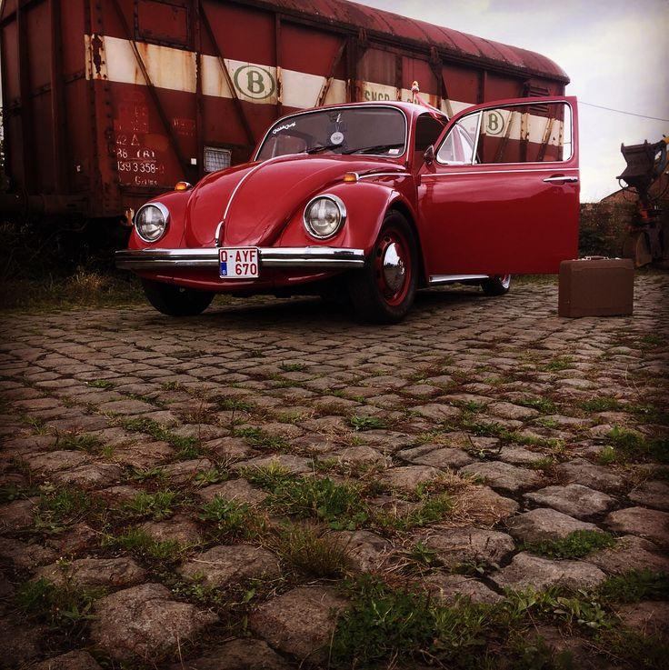 7 Best Volkswagen Images On Pinterest Volkswagen Arrow And Beetle Bug