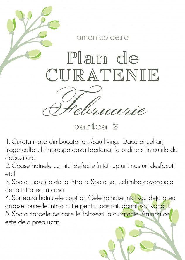plan curatenie februarie