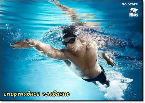 спортивное плавание Чернигов