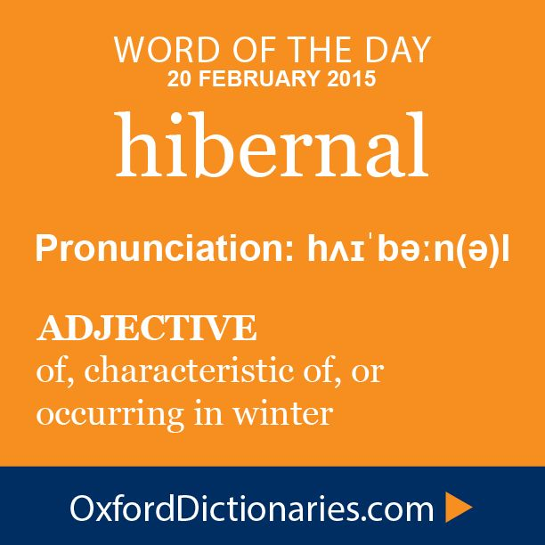 hibernal (adjective): of, characteristic of, or occurring in winter. Word of the Day for 20 February 2015. #WOTD #WordoftheDay #hibernal