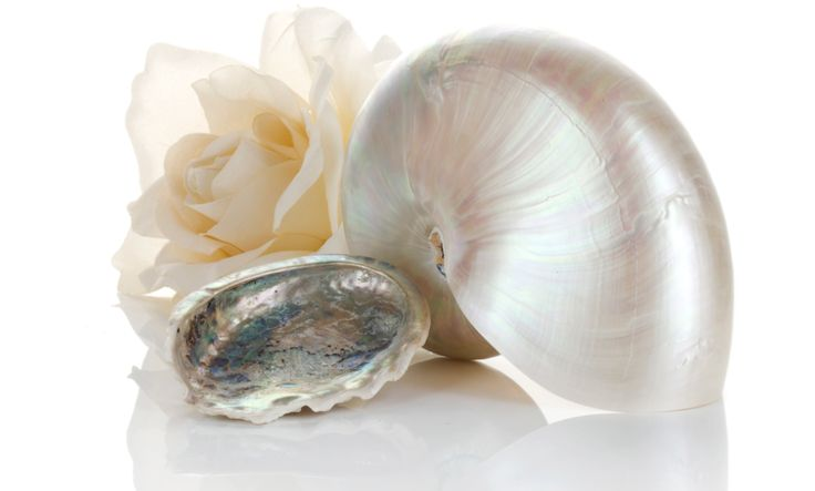 Did you know? Pearl extract helps to regenerate tissue