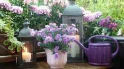 Il fascino dei balconi fioriti, dei veri e propri piccoli giardini I balconi fioriti, dei veri e propri piccoli giardini per coloro che non hanno a disposizione uno spazio esterno. Se curati nel modo giusto, se si scelgono con criterio l specie da coltivare è possib #balconi #fioriti #piante #vasi