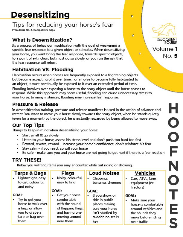 Volume 1, No. 5 has our top tips for helping your horse over come his/her fear.  This HoofNote is based on a larger article on desensitizing your horse, featured in Issue No. 3, Competitive Edge. Download the full PDF here: http://wp.me/p3ER8w-ae