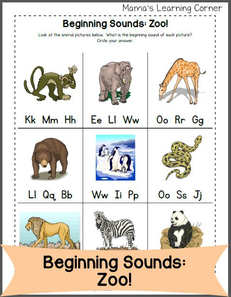 beginning letter sounds zoo edition worksheets printables for pre k to second grade zoo. Black Bedroom Furniture Sets. Home Design Ideas