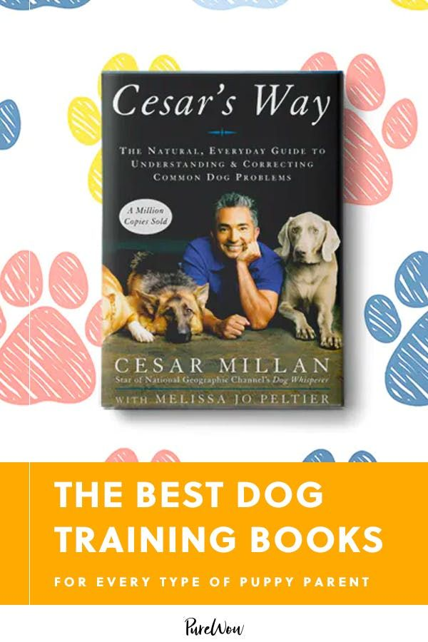 The Best Dog Training Books For Every Type Of Puppy Parent Best