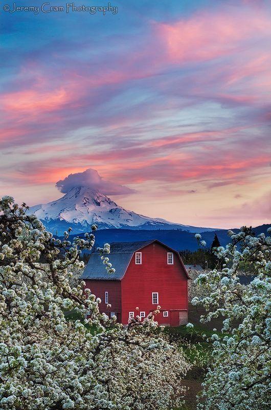 Red barn, Mt. Hood, Oregon