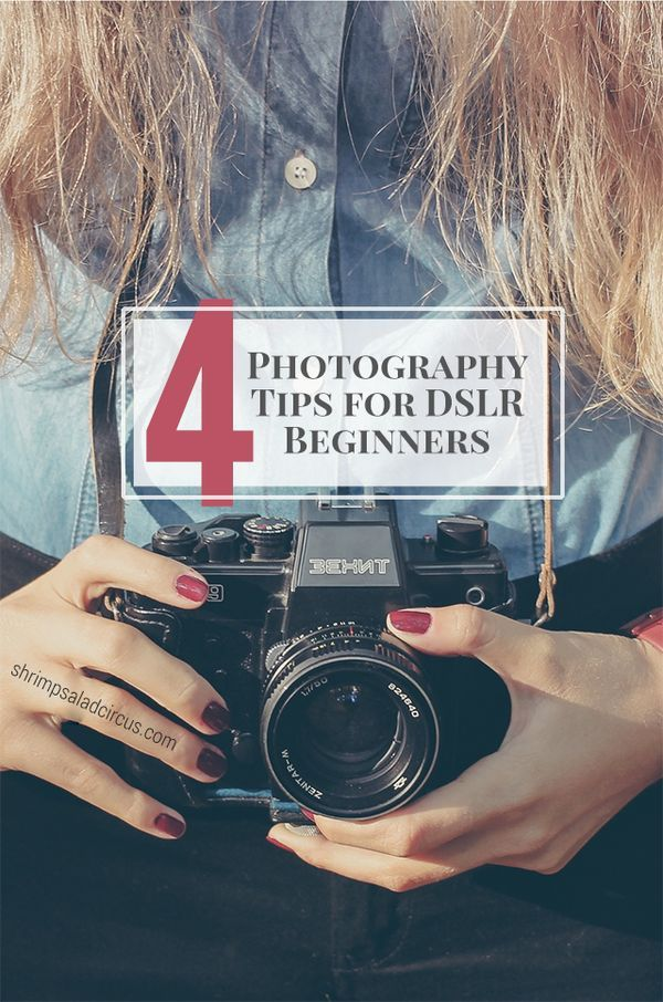 4 Tips for DSLR Photography Beginners - Even if you've never picked up a digital camera before, learn the basics for a very beginner, including basic tips about aperture, exposure, and more. You'll be taking your first manual photograph in no time! Follow this free 101 guide today!