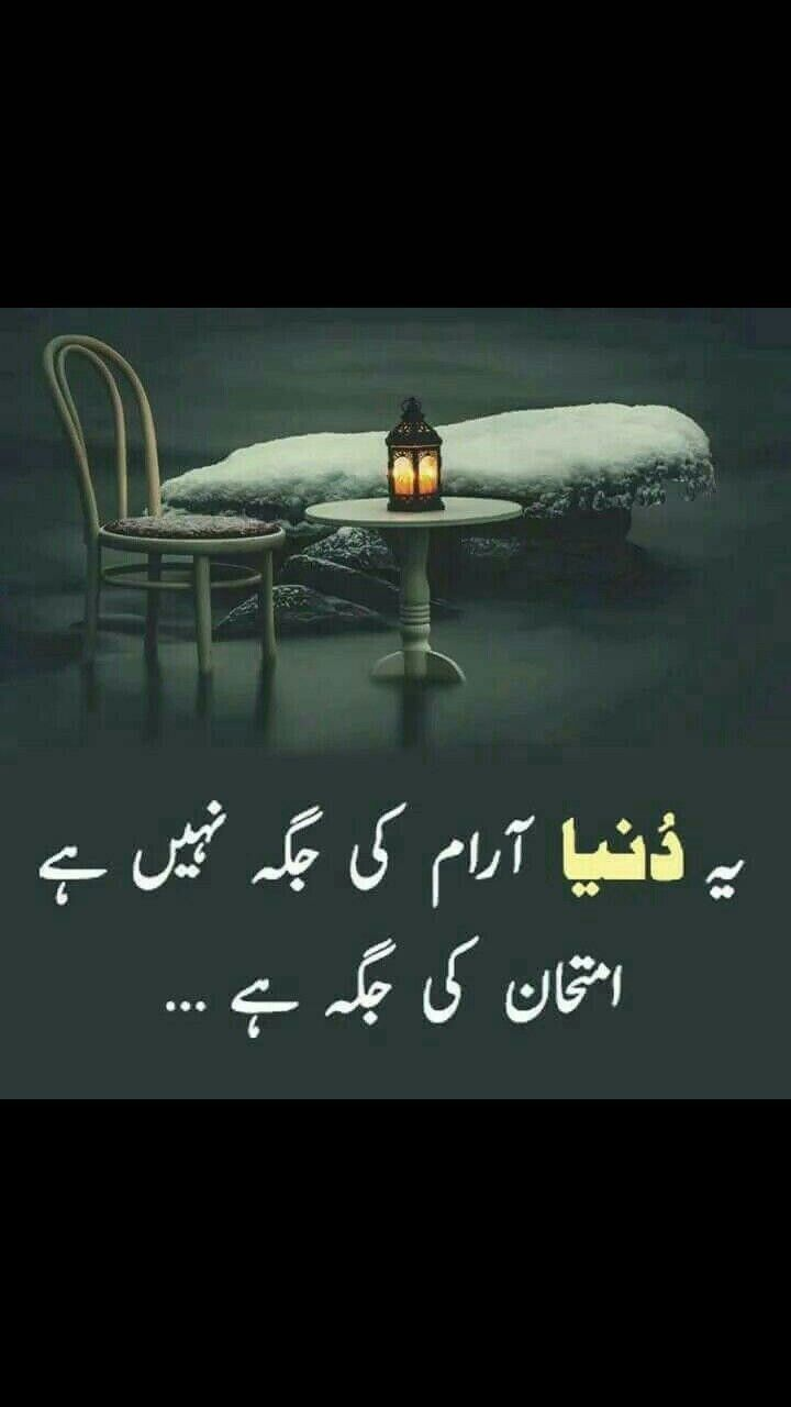 cool urdu quotes 4 status arena 4 whatsapp  Urdu quotes