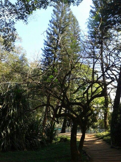 Aclimação Park, São Paulo
