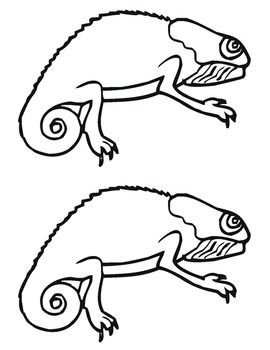 Chameleons a stick and puppets on pinterest for Mixed up chameleon coloring page