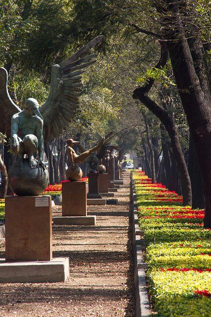 Paseo de la Reforma Mexico City . Existe una parte donde solo está una escultura con solo las alas y puedes tomarte una foto como si tuvieras tu mismo esas alas  ;)