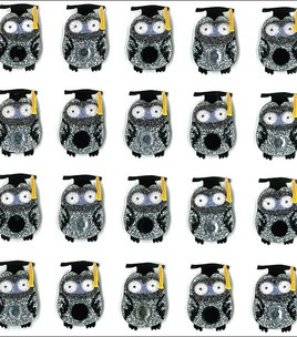 Owl graduates stickers @ Joann's