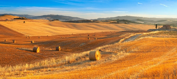 Monteroni D'Arbia - SIENA    Dreams to come to Tuscany?  Click LIKE on page www.facebook.com... pinned with Pinvolve