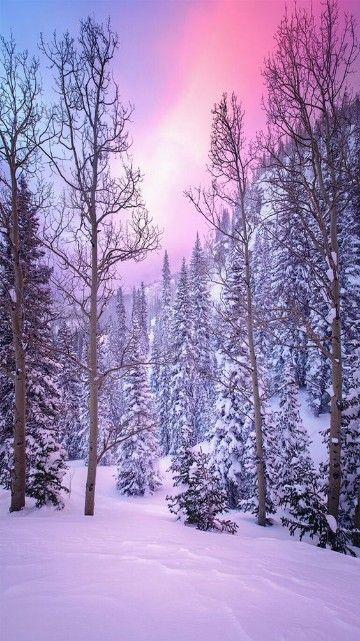 paisajes de invierno bonitos mundo en 2020 | Fondos de ...