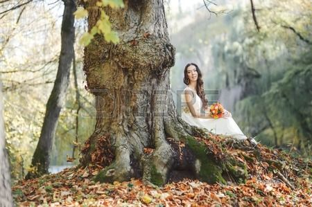 Bride at countryside next to old big tree Wedding in forest  Stock Photo