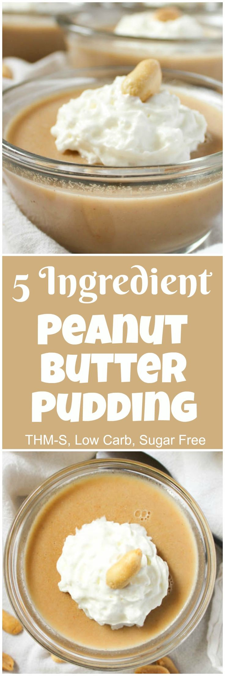 5 Ingredient Peanut Butter Pudding (THM-S, Low Carb, Sugar Free)