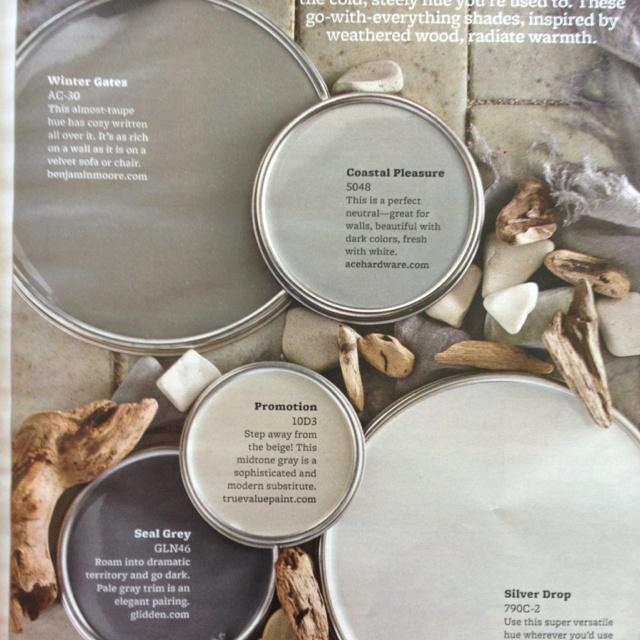 "Color scheme - driftwood grays:  Benjamin Moore ""Winter Gates"" AC30, Ace hardware ""Coastal Pleasure"" 5048"