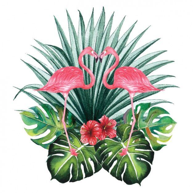 Diseño decorativo de flamencos en acuarela Vector Gratis