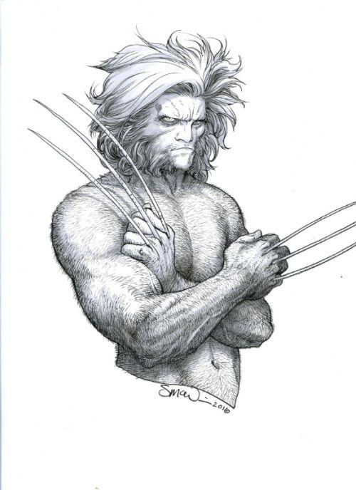 Wolverine   Steve McNiven