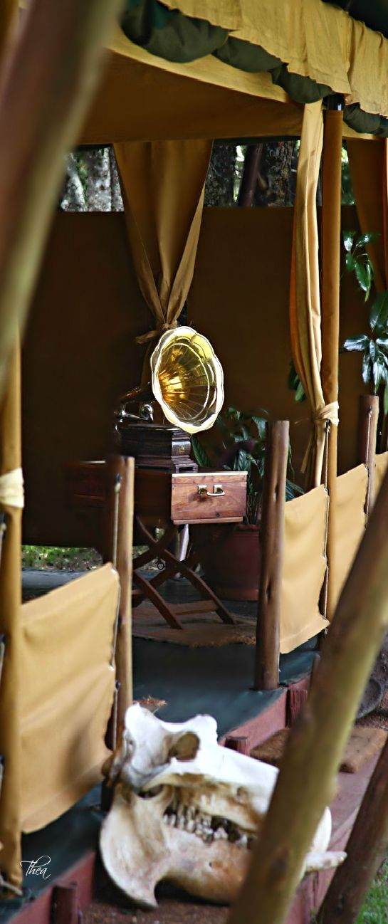 Luxury  On Safari ● Tent Decor~ #LadyLuxuryDesigns