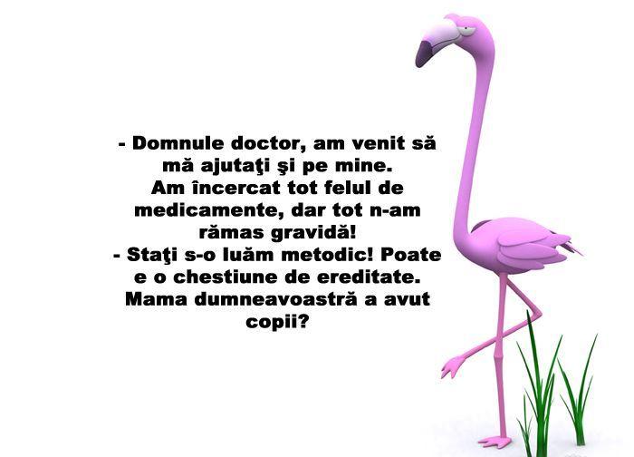 Mama Dv A Avut Copii  - Cum poate un medic sa intrebe asa ceva? Auzi gaselnita: Mama dvs a avut copii? =))) 2015 #bancuri #bancuricudoctori #glumecudoctori