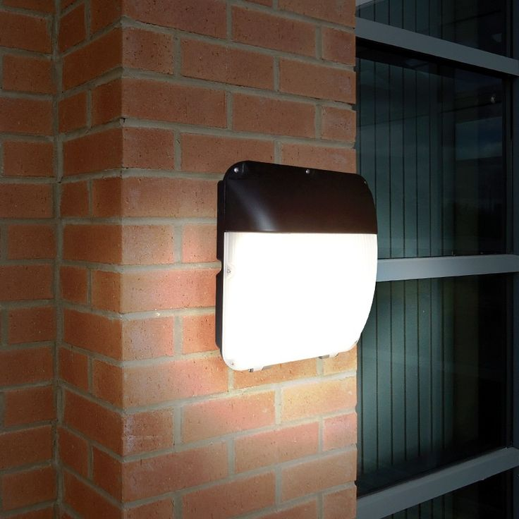 Eterna 30W Cool White LED Outdoor Wall Light