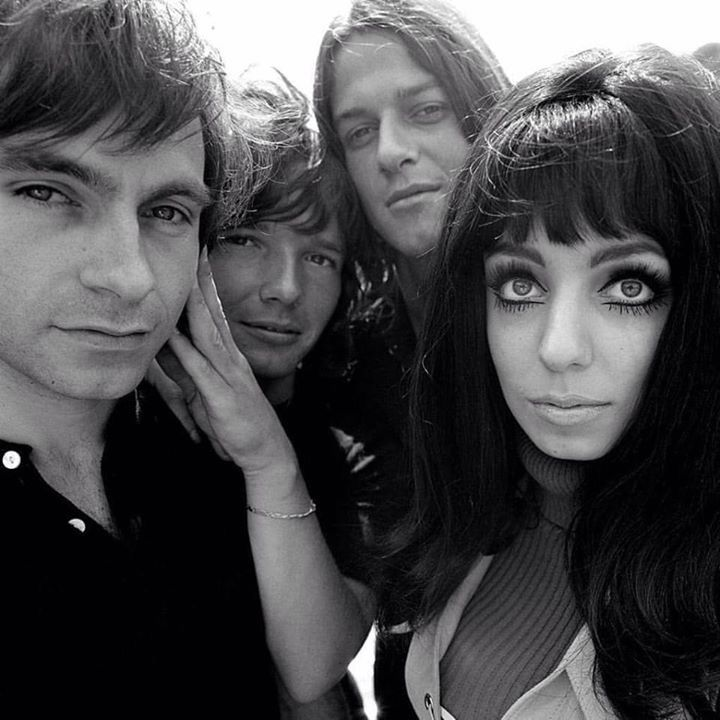 shocking blue картинки