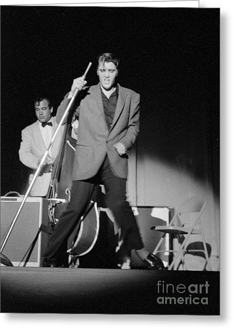 Elvis Presley And Bill Black Performing In 1956 Greeting Card by The Harrington Collection