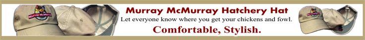 Murray McMurray Hatchery - Bantams Chicks