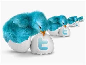 twitter - Bing Images