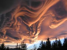"I want to go to there. This particular formation is an example of Undulatus asperatus—meaning ""agitated waves"""
