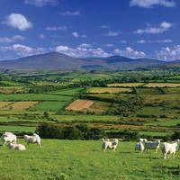 14-daagse vlieg-busrondreis All of Ireland  Deze reis met deskundige reisleiding laat u kennismaken met vrijwel heel Ierland: een sterk wisselend landschap eeuwenoude monumenten en de gastvrije bevolking!  EUR 1249.00  Meer informatie  http://naaar.nl/1RmW6bC