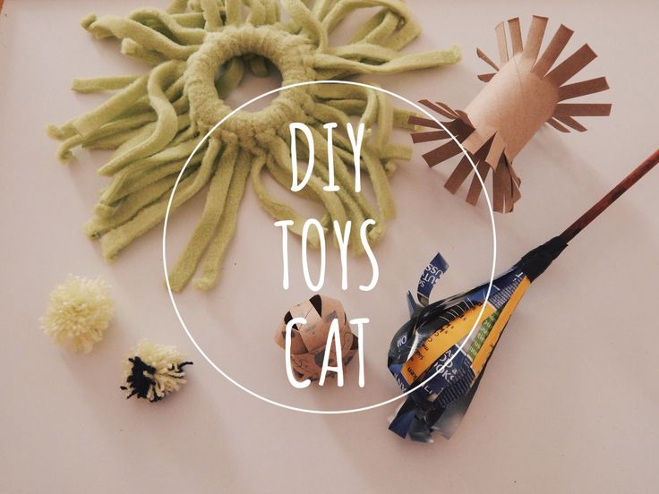 DIY cat | liexlou's Blog
