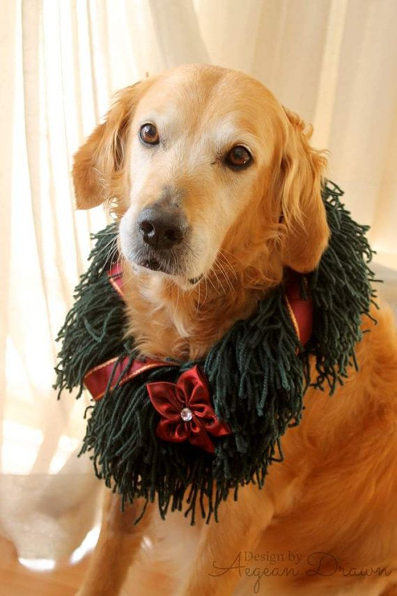 Christmas Wreath for Dogs, Dog Christmas Wreath, Holiday Dog Costume, Christmas Costume for Dogs, Large Dog Christmas Outfit, Dog Wreath