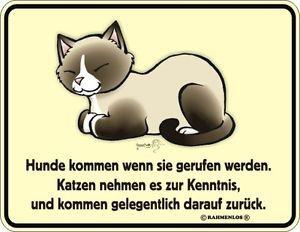 Blechschild-Schild-Katzen-nehmen-zur-Kenntnis-Geschenk-fuer-Katzenfreund-Deko